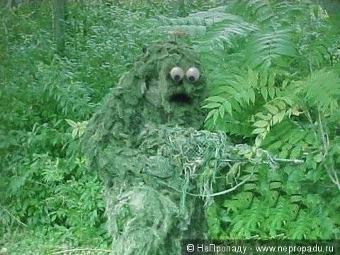 Пошли Галя с Ваней в лес по …