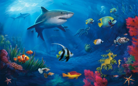 7 чудес мирового океана