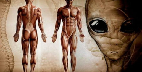 10 главных причин, почему мы до сих пор не встретили инопланетян