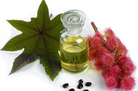 Лечебные растительные масла.…