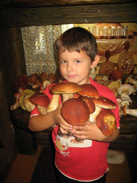Не смотрите, что я маленький...Самые большие грибы я нашёл!!!
