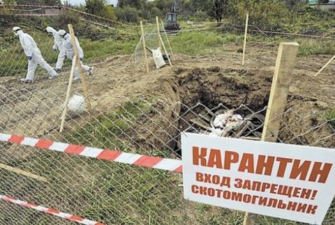 Реклама кладбища. Ю. Витязева