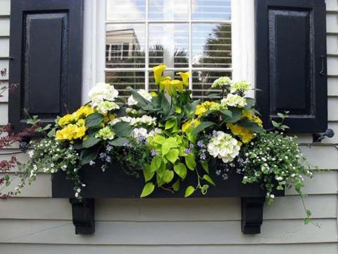 Простой способ обустроить шикарный цветник за окном