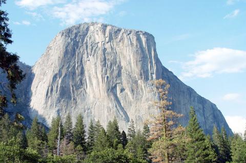 Камень в лесу: гигантские мо…