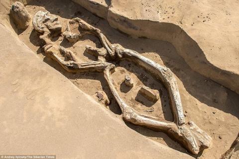 В России нашли 1300-летний «танцующий скелет» и его могила уникальна