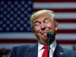 Президент Трамп нанял для ох…