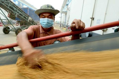 Китай будет субсидировать хранение и перевозку зерна
