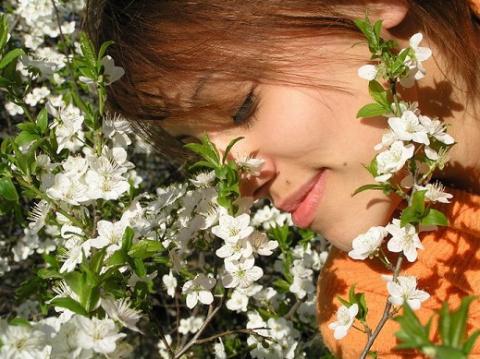 Эфирные масла для различных типов кожи лица