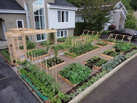 Идея для огорода