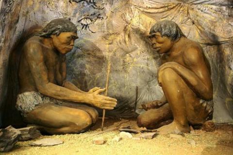 ТОП-20: Дикие факты об эволю…