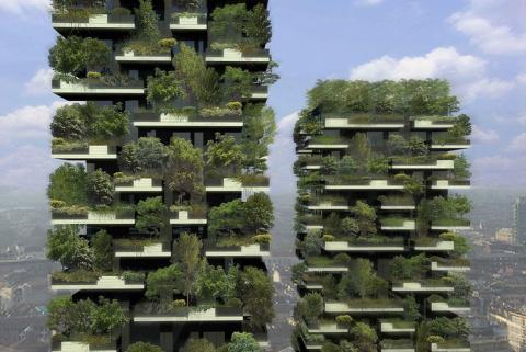 Неужели этот лес растет на б…