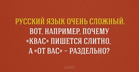 7 интересных фактов о русском языке