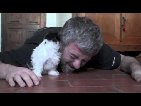 Знакомство щенка и человека. Кажется, они нашли друг друга