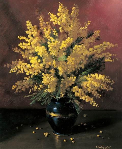 Нежные цветы в рассеянном св…