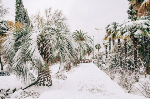 Сочи в снегу зимой 2016