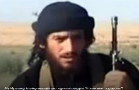 В Сирии убит лидер группировки, взорвавшей российский самолет над Синаем