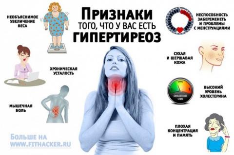 Щитовидная железа контролиру…
