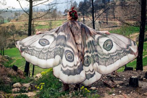 На крыльях бабочки: изумительные плащи и палантины в виде крыльев мотыльков