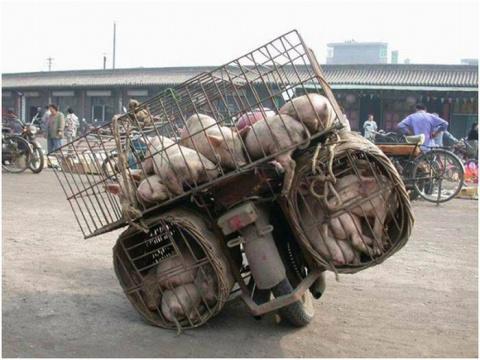 Ещё примеры негабаритной транспортировки