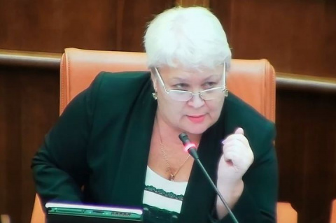 «За базаром следи!»: глава комитета по культуре красноярского парламента отчитала коллегу за «бред»