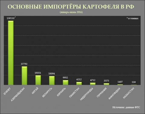В первом полугодии Египет поставил картофеля в Россию в 7 раз больше Беларуси