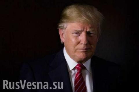 Трамп пересмотрит ряд натовских авантюр... «Паника продолжается»