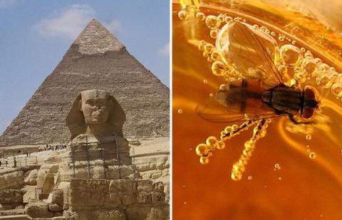 Шокирующие факты о Древнем Египте