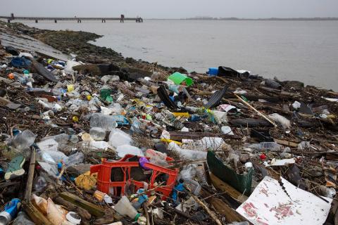 Пластиковое побережье Темзы в Англии
