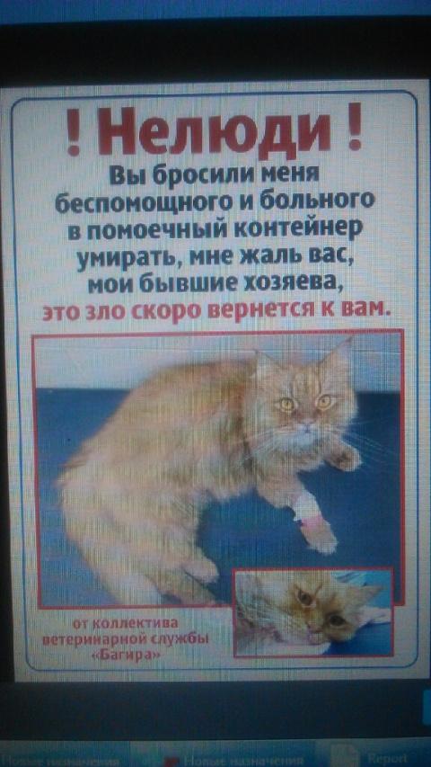 Клиенты ветеринарки выкинули…