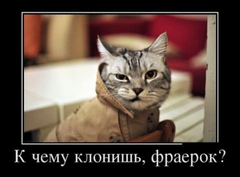 СВЕЖАЯ ПОРЦИЯ ДЕМОТИВАТОРОВ
