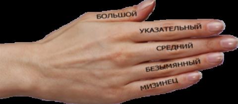 Значение пальцев на руках