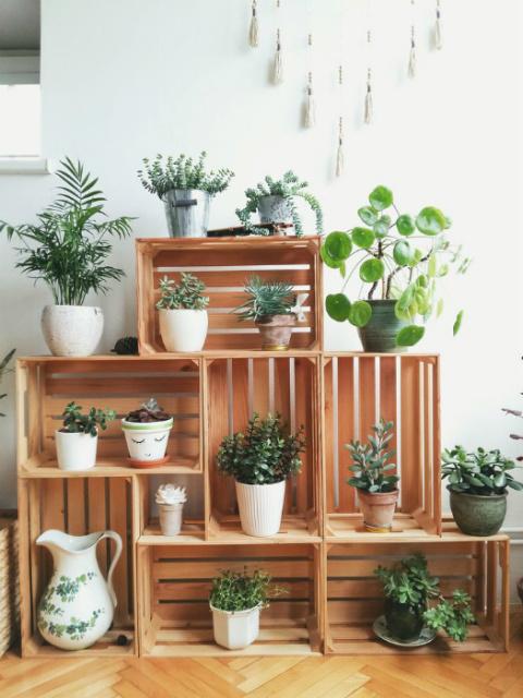 Блестящие идеи, которые помогут превратить дом в цветущий оазис даже зимой
