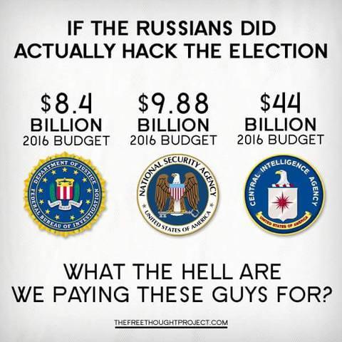 """""""Если русские действительно хакнули наши выборы, то какого черта мы платим этим парням?"""""""