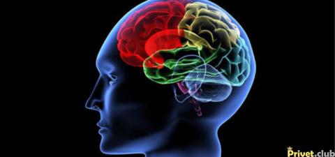 10 опасных привычек, медленно убивающих твой мозг. Срочно избавься от них!