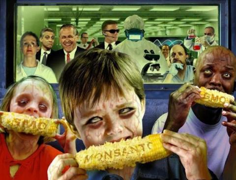 ГМО-продукция США может попасть на рынок России