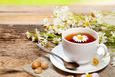Ромашковый чай продлевает жизнь женщин