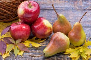 Яблоки и груши: готовим вкус…