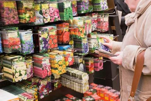 Сколько хранятся семена из магазина