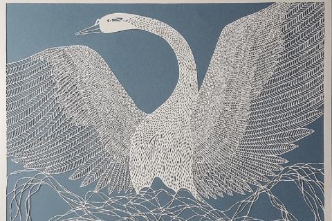 Легче перьев лебедя