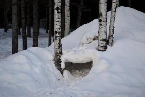 Отец с сыновьями оказались в снежной ловушке, и вот кто пришел им на помощь