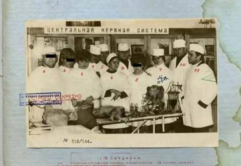 Совершенно Секретно — Советский биоробот