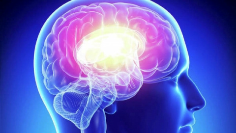 Как развить мозг: 8 лучших упражнений