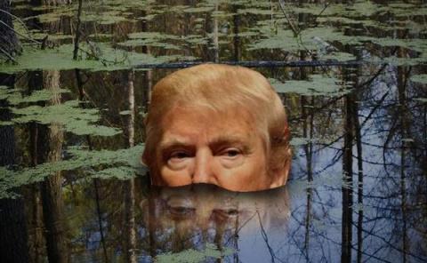 За 24 часа Трамп переобулся в отношении пяти ключевых обещаний