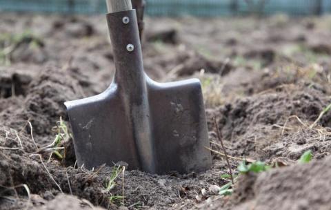 Земельная реформа: Украину продадут по дешёвке