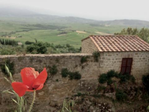 Сырная ферма в итальянском Пьенца