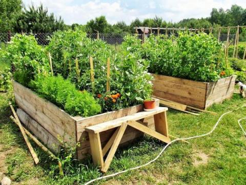 Огород без перекопки: высокие грядки