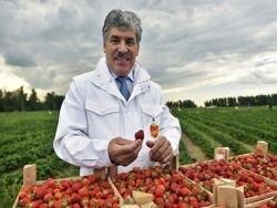 Павел Грудинин как президент России для белорусского обывателя