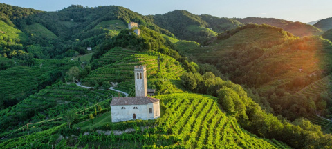 Тревизо, Италия: по винодельням на родине просекко