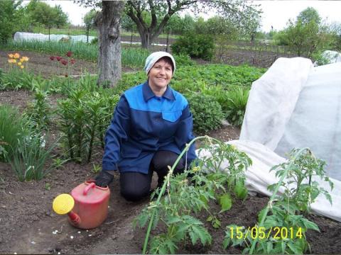 Полезные советы огородникам и цветоводам