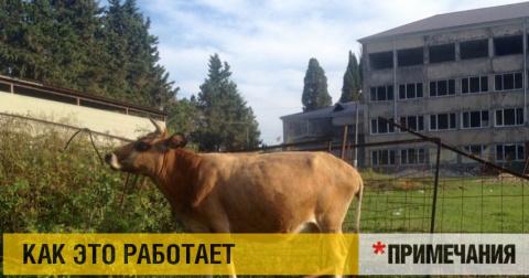 Абхазия, кривое зеркало Крыма